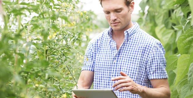 Szakmai konzultáción a digitális agrárstratégia tervezete