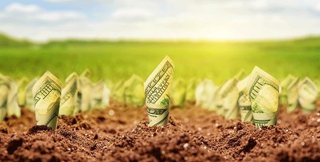 FÓKUSZBAN: AgroFIN 2019